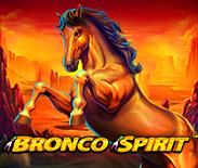 Bronco Spirit